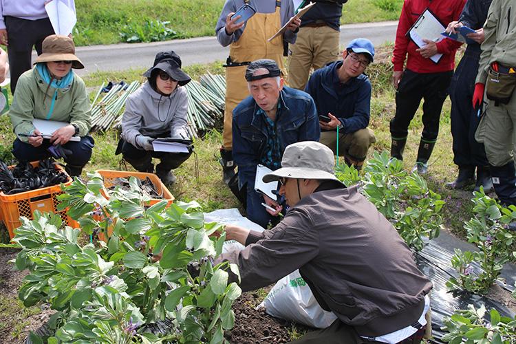 農業技術を学ぶ
